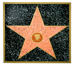 Walk of Fame Star!