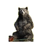 Baloo The Jungle Book Cardboard Cutout *2168
